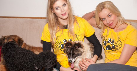 Ashley becomes an ambassador for the K9 Angels charity