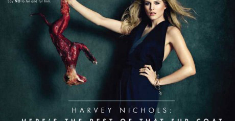 I've teamed up with PETA to Call On Harvey Nichols to Stop Selling Fur